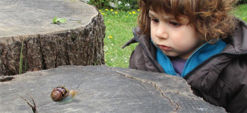 Calma, Serenidad, LENTITUD: el lado humano de la Educación y la Crianza